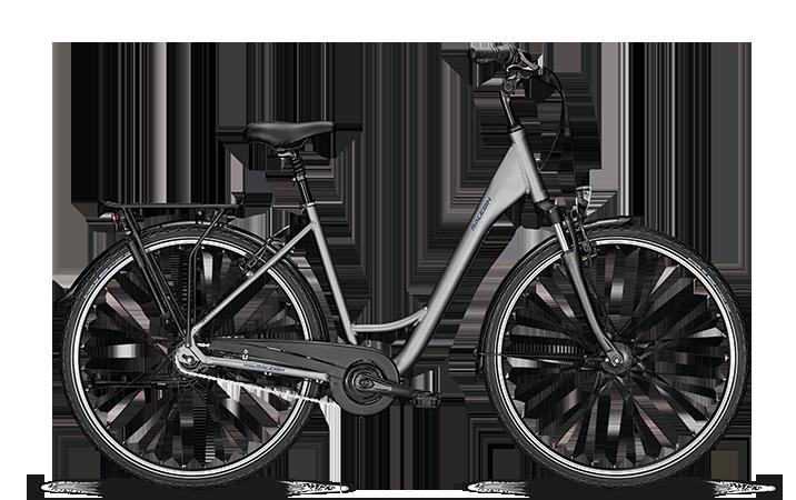 e bike und fahrrad modelle 2019 raleigh fahrr der. Black Bedroom Furniture Sets. Home Design Ideas